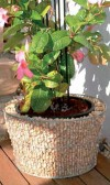 Tapered flower planter (including inner planter)-0